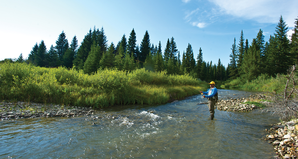 Cypress Hills Fly Fishing