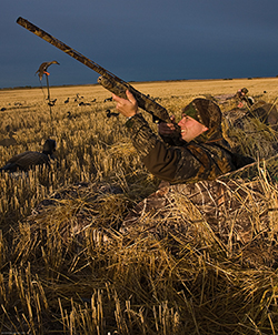 Bird Hunting Saskatchewan, Canada
