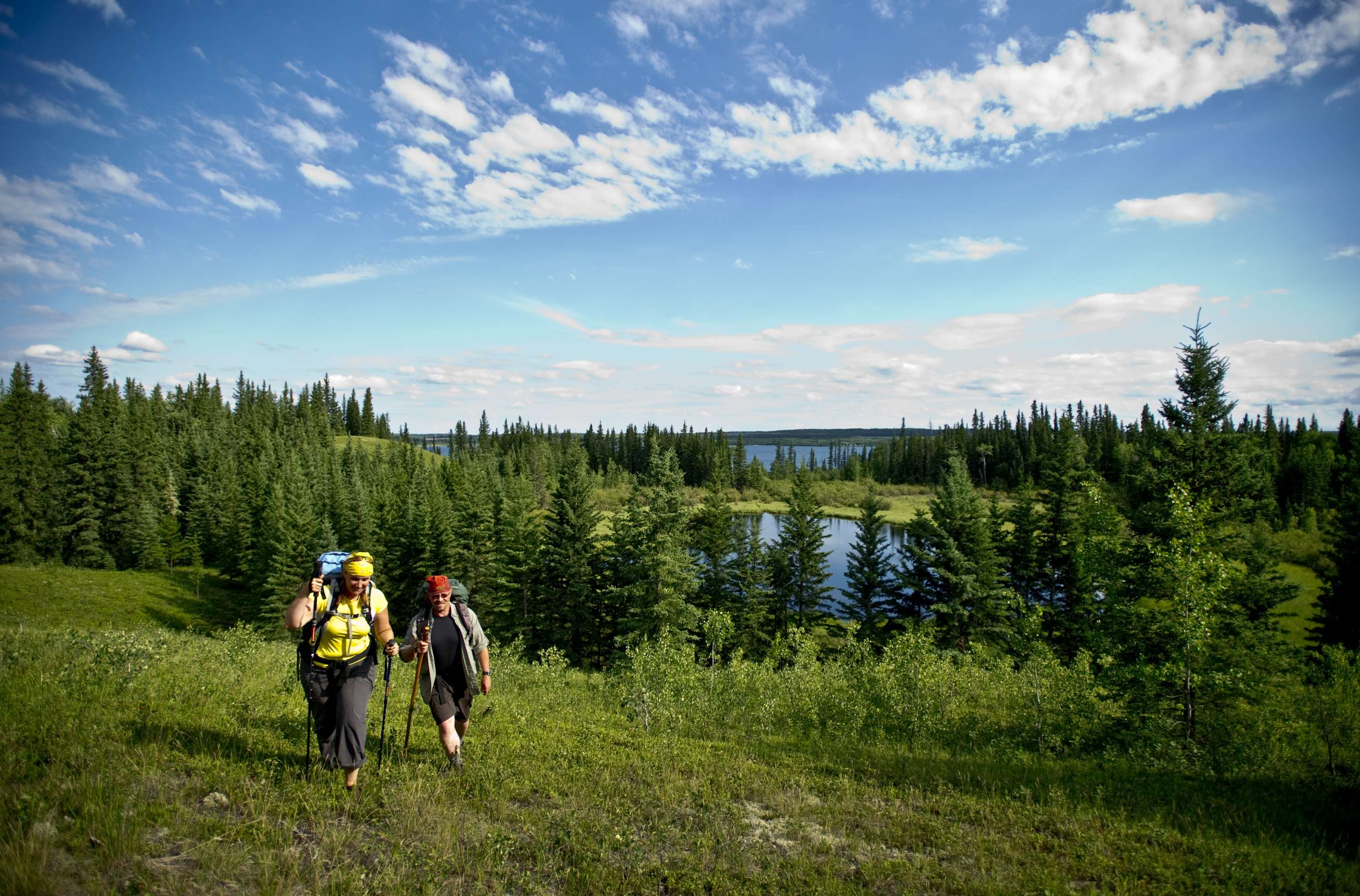 Boreal Trail Meadow Lake Provincial Park Hiking